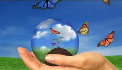 nurturing-the-ecosystem
