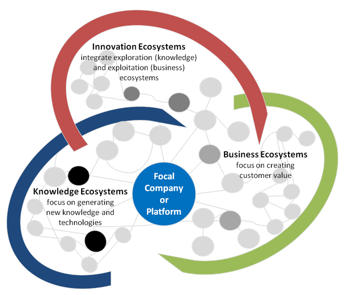 The Interconnected Parts of an Ecosystem | Ecosystems4innovators